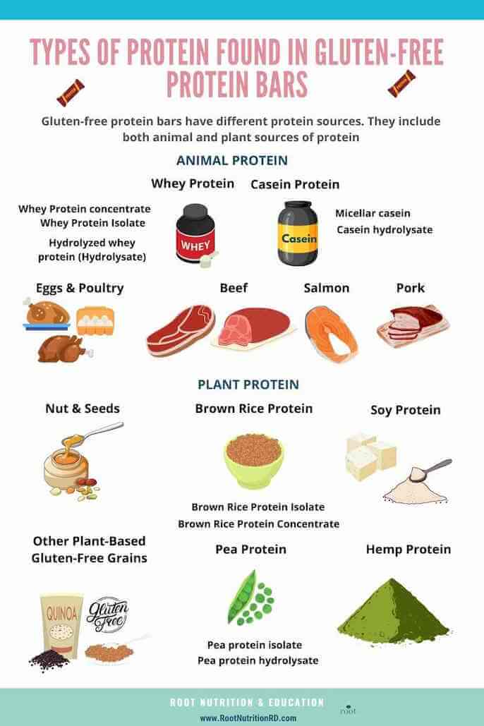 Types of Protein Found In Gluten Free Protein Bars Infographic   Root Nutrition & Education