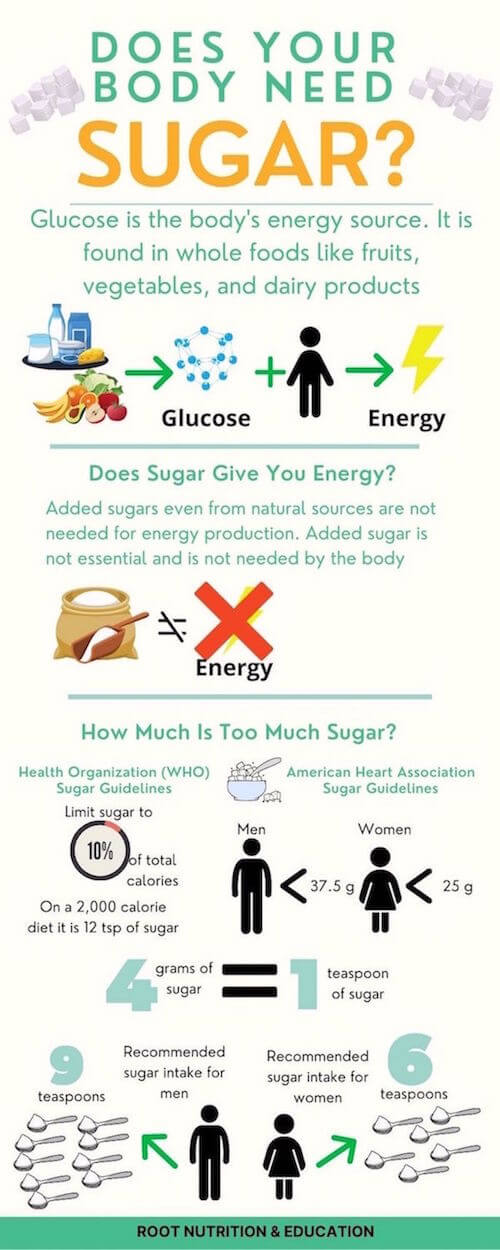 Does your body need sugar infographic | Root Nutrition & Education
